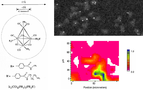 [Structure, STEM micrograph and IR image of Tetrairidum conjugate (81k)]